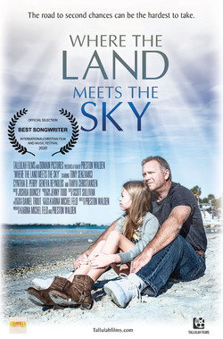 LandSkyMovie