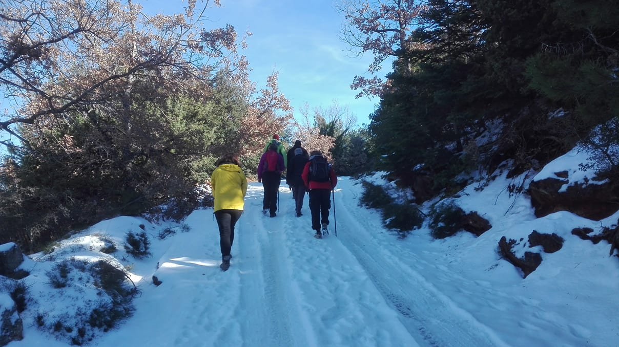 yoga & trekking retreat