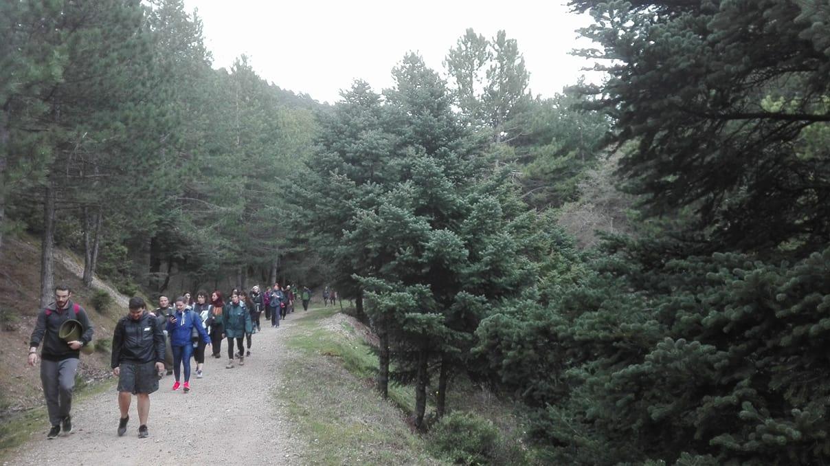 Trekking and Yoga