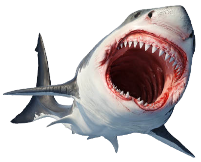shark%20open%20mouth_edited.png
