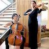 violin and cello Button.jpeg