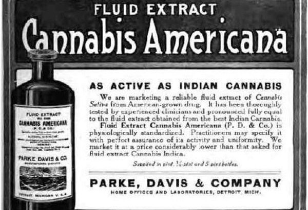 Medicinal Cannabis in the 1800s.