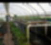 backgrounds-1423865664-NEXT_graphic_jour