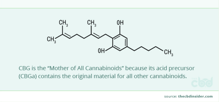 CBG - Cannabigerol: What is it, and What is it Good For?