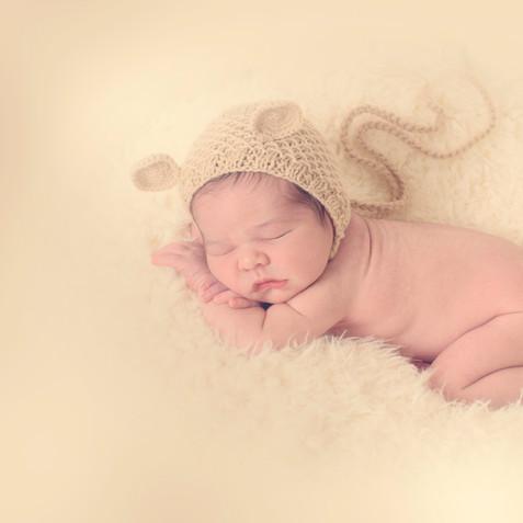 newborn torrejon de ardoz