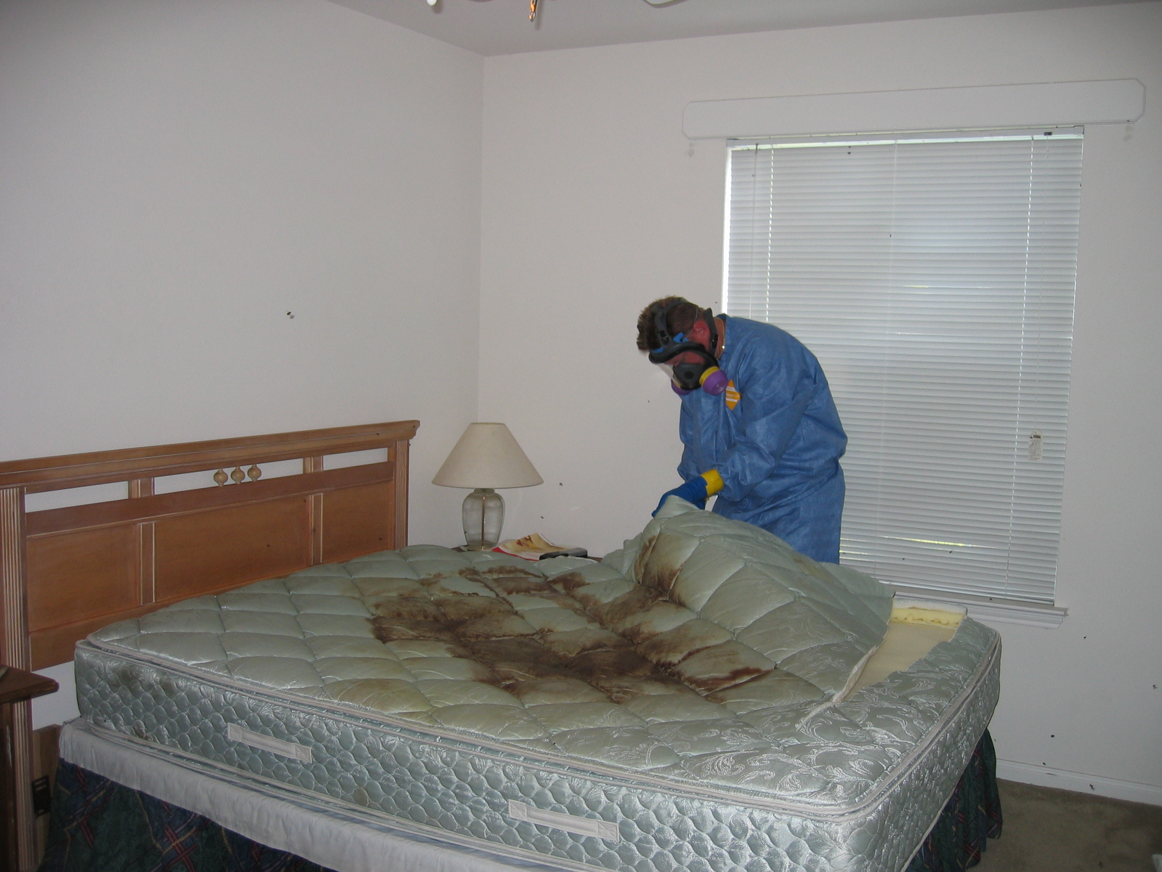 decomposition stain on mattress