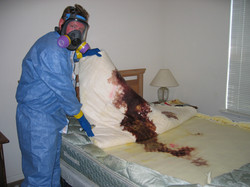 biohazard decomposition cleaning