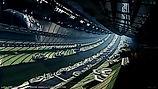 Interior_Weyland_Orbital_Steve_Burg Prom