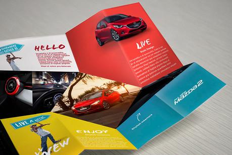 Mazda DM campaigns