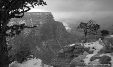 Grand Canyon bw #6