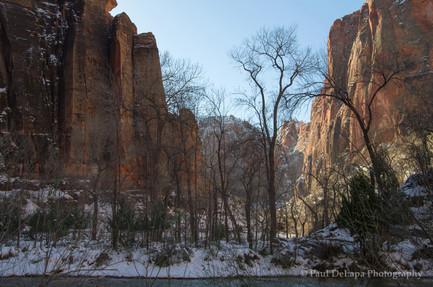 Zion Winter #20