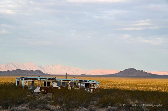 Mohave Desert #16
