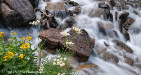 Lamarck & Wonder Lakes #19