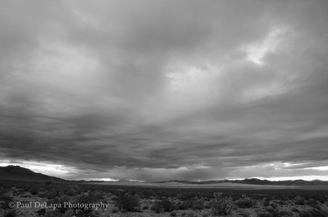 Mohave bw #3