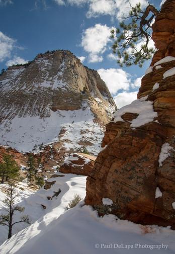 Zion Winter #8