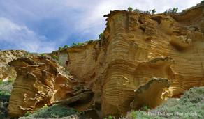 Lobo Canyon #1