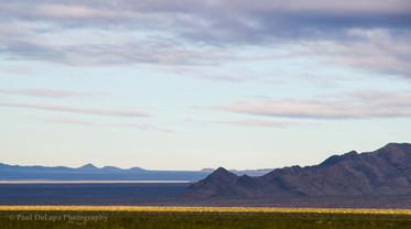 Mohave Desert #1