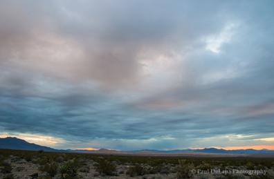 Mohave Desert #8