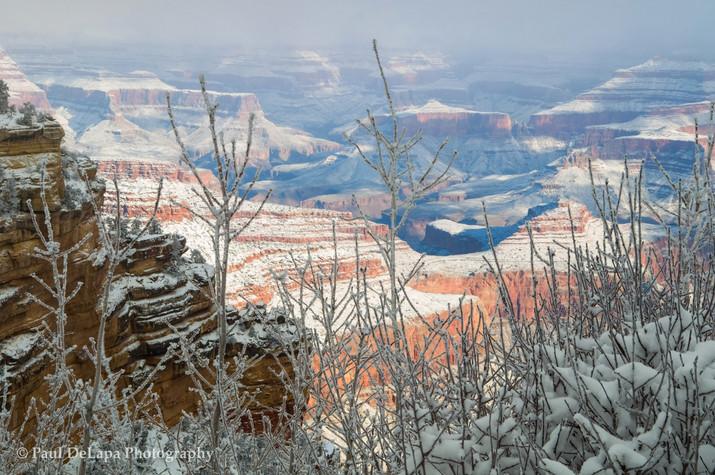 Grand Snow-Canyon #6