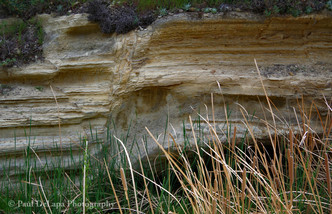 Water Canyon #9