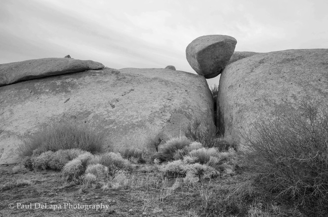 Mohave bw #6