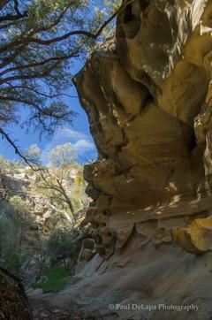Salisbury Canyon #7