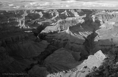 Grand Canyon bw #3