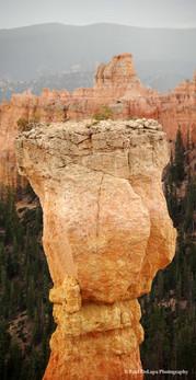 Bryce Canyon #13