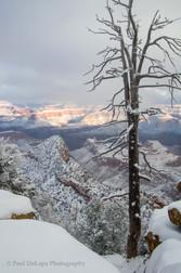 Grand Snow-Canyon #2