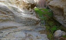 Water Canyon #10