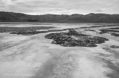 Death Valley bw #13