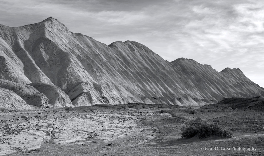Death Valley bw #16