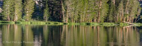 Virginia Lakes #15