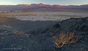 Death Valley #13