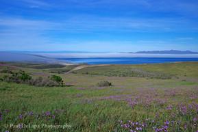 Santa Rosa Island #1