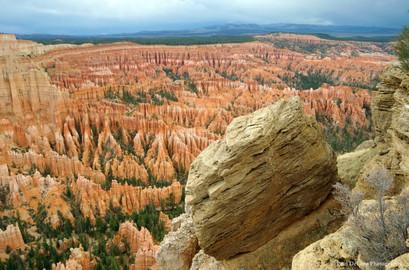 Bryce Canyon #14