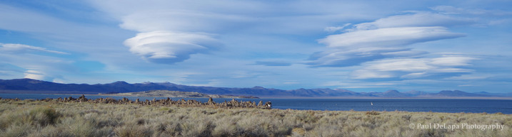 Mono Lake #13