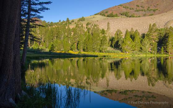 Virginia Lakes #8