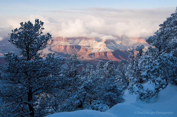 Grand Snow-Canyon #17