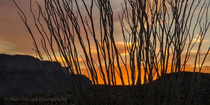Sunset #14