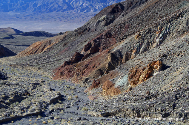Panamint Valley #6