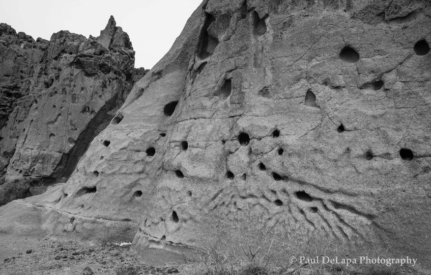 Mohave bw #11