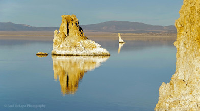 Mono Lake #24