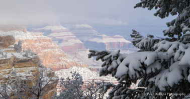 Grand Snow-Canyon #7