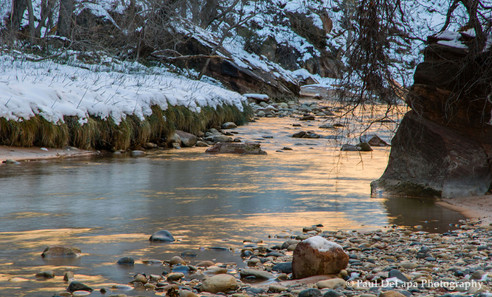Zion Winter #11