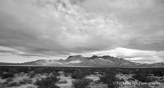 Mohave bw #13