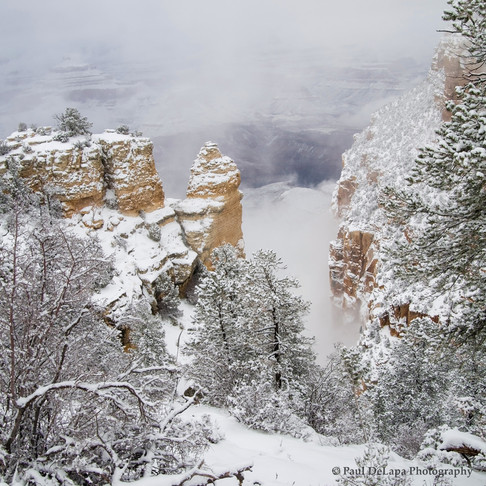 Grand Snow-Canyon #11