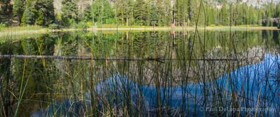 Olaine Lake #6