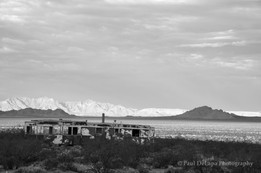 Mohave bw #10