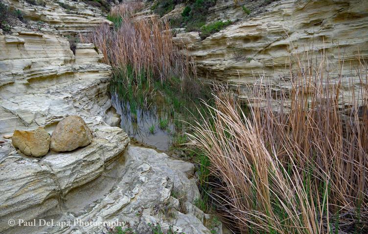 Water Canyon #16